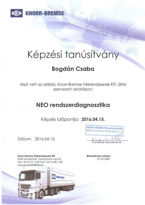 tanusitvany_knorr_2