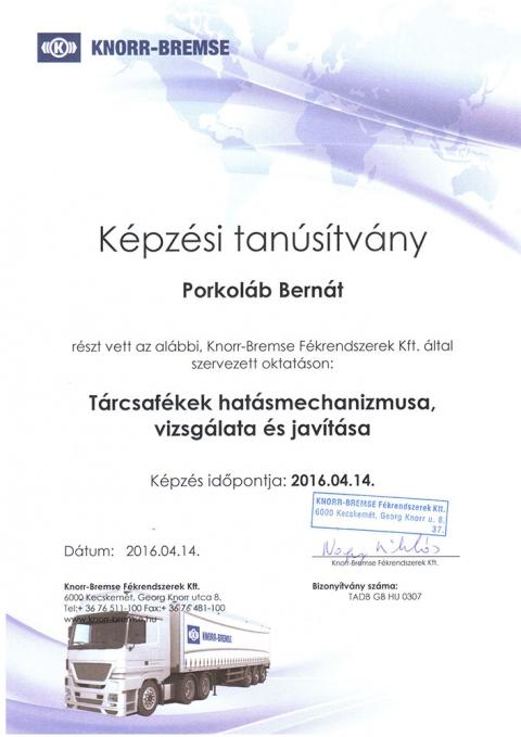 tanusitvany_knorr_5