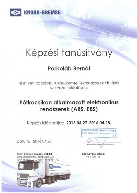 tanusitvany_knorr_7