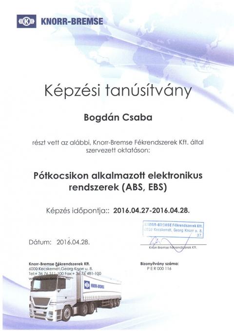 tanusitvany_knorr_8